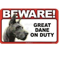"""BEWARE Guard Dog on Duty Sign - Great Dane by Scanical. $1.79. Let everyone know to """"BEWARE!"""" because your furry friend is on guard duty with these striking laminated heavy cardstock signs. They make a great gift for any occasion and are ideal for any INDOOR, or weather protected environment. Measures8 x 4.75 inches"""