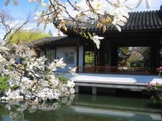 "DR. SUN YAT-SEN CLASSICAL CHINESE GARDEN: Step into our door and out of your daily life. As your heart and mind relax, energy renews. Journey back in time to 15th Century China and enjoy this ""window to another world"". $14"