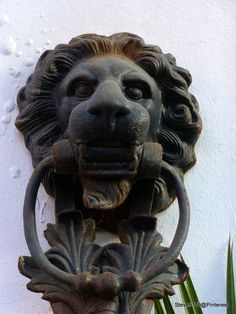 Lion door knocker @ Hotel Transatlantique, Casablanca