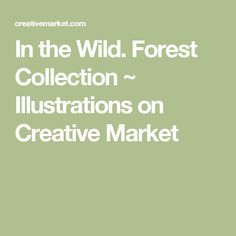 In the Wild. Forest Collection ~ Illustrations on Creative Market