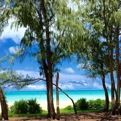 【play_and_pray_】さんのInstagramをピンしています。 《#island #islandstyle #hawaii #bluesky #skyblue #beach #tropicalocean #cleanwater #green #808 #afternoon #blue #sand #holoholo #青空 ビーチ #Natural #アイランド #アイランドスタイル #海 #オーシャン #ブルー #空色 #スカイブルー #グリーン #緑 #林 #南国 #夏 #ハワイ》