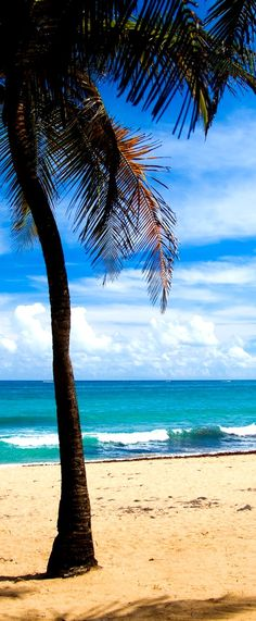 Top 10 Beaches in Puerto Rico for a Sunny Vacation!