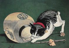"""Kunichika 国周 1877 """"Cat and Lantern"""" / """"猫と提灯"""" The cat depicted in this print is a Japanese Bobtail - a breed of cat I've wanted since I was a teenager. Art And Illustration, Illustrations, Japanese Bobtail, Japanese Cat, Cat Drawing, Painting & Drawing, Bobtail Japonais, Japanese Legends, Oriental Cat"""