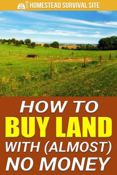 Believe it or not, owning a piece of land in the countryside is not a pipe dream. In fact, it is very doable if you make smart decisions. Survival Life Hacks, Survival Prepping, Survival Skills, Survival Gear, Survival Quotes, Homestead Land, Homestead Survival, Investing In Land, Real Estate Investing
