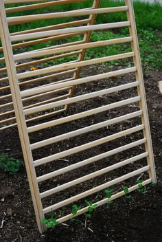It's easy to source free broken or drop side cribs and the sides make great garden trellis for cucumbers, squash, and peas....with shade for lettuce underneath! From http://fromscratchclub.com/2011/06/02/garden-patience-learning-done/
