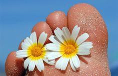 Daisy toes. Daisy, Charmed, Random, Summer, Image, Summer Time, Margarita Flower, Daisies, Casual