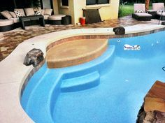 Superior pools www.superiorpoolsswfl.net  Two different color pebble finishes