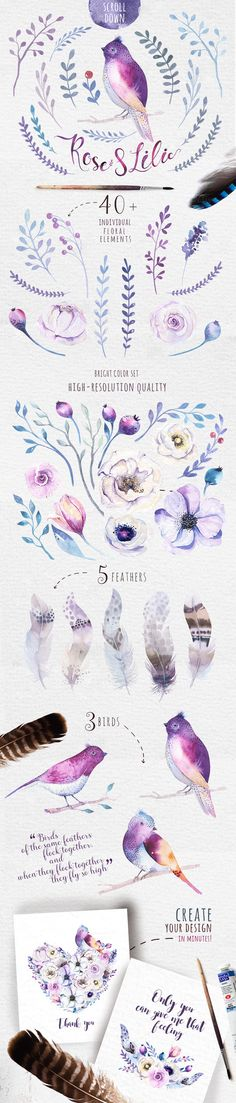 Hand painted watercolor floral and feather elements. Hand painted watercolor floral and feather elements. Perfect graphic for DIY, wedding invitations, greeting . Illustration Blume, Watercolor Illustration, Watercolour Painting, Watercolor Flowers, Painting & Drawing, Painting Flowers, Watercolors, Watercolor Animals, Peace Art