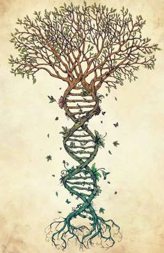 That double helix trunk is exactly what I want to wrap around my arm, on either side of the quote I've already got: Family isn't determined by DNA; rather, it is those that stand by you through adversity. :)
