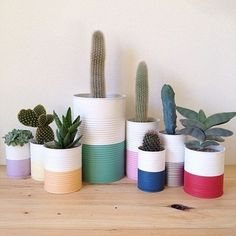 DIY color recycled cans and use as planters - Cacti family . - DIY color recycled cans and use as planters – Cacti family …, - Recycle Cans, Diy Recycle, Tin Can Crafts, Diy And Crafts, Paint Recycling, Recycled Planters, Cactus E Suculentas, Painted Plant Pots, Paint Can Planters