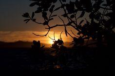 Sunset at #Berkeley Marina, San Francisco. #Photography by @luciamfloi