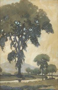 Walter King Stone - Elm