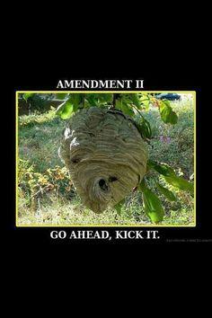 Go ahead, kick it. #2a #guns