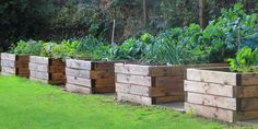 Want to learn how to build a raised bed in your garden? Here's a list of the best free DIY raised garden beds plans & ideas for inspirations. Raised Garden Bed Plans, Building Raised Garden Beds, Raised Beds, Raised Vegetable Gardens, Vegetable Gardening, Organic Gardening, Gardening Tips, Kitchen Gardening, Gardening Magazines