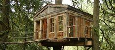 Treehouse Masters - S1,2 *AiRiNG* - sharethefiles.com