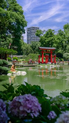 #buenosaires #argentina #jardin #japon #citylife #travelphotography #nature City Life, Golf Courses, Travel Photography, Around The Worlds, Photo And Video, Nature, Instagram, Buenos Aires, Argentina