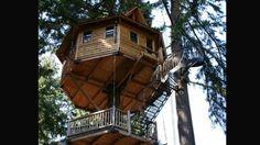 Esta casa árbol está en Oregón,EE.UU y tiene cabida para 5 personas.Es una cabaña colgada en un árbol. Cuenta con una cama doble, dos liter...