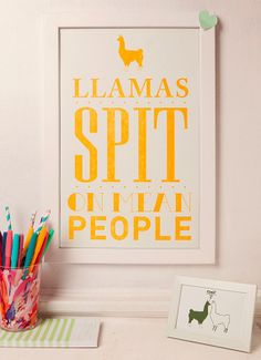 Llamas spit on mean people