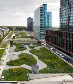 Project: Mandelapark   Designer: Karres en Brands Landscape Architecture  Location: Almere, The Netherlands    The park is situated on the roof of two four-layered underground parking garages. With its 200 meter length, it's the largest rooftop park in the Netherlands. The park is a green oasis in a highly urban environment, a landscape with water features, grasses, perennials and flowering shrubs.