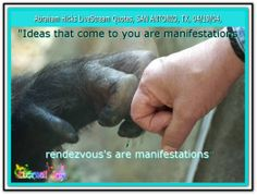 Ideas that come to you are manifestations. Rendezvous's are manifestations. Abraham-Hicks Quotes (AHQ2458)