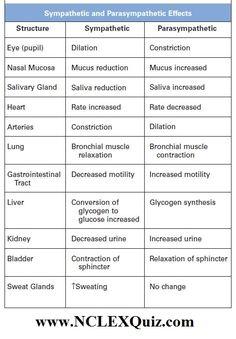Sympathetic and Parasympathetic Effects Chart