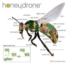 Harvard Robotics is developing a solution to the bees crisis. Swarms of small robot-bees, built in titanium and plastic that can pollinate gigantic expanses of GMO crops. New Technology Gadgets, Spy Gadgets, Drone Technology, Futuristic Technology, Computer Technology, Digital Technology, Technology Quotes, Electronics Basics, Electronics Projects