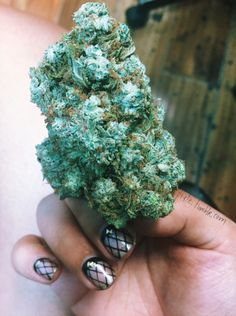 8 gram nug of Gorilla Glue