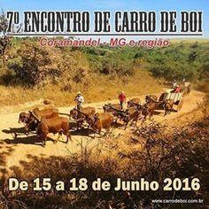 Festas de Carros de Boi: Encontro de Carro de Boi de Coromandel - MG e regi...