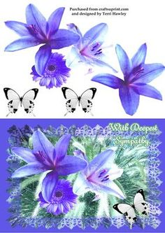 with deepest sympathy lily on Craftsuprint - Add To Basket! Happy Birthday My Friend, Sympathy Cards, Greeting Cards, Purple Lily, Blue, Best Wishes Card, Deepest Sympathy, Little Prayer, Bear Birthday