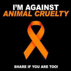 I'M AGAINST ANIMAL CRUELTY!!. REPIN IF YOU ARE TOO!