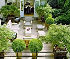 London terrace garden. Pinned to Garden Design - Roof Gardens by Darin Bradbury.