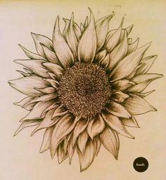 sunflower on We Heart It