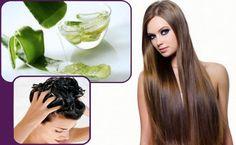 Como hacer crecer el cabello rapido - Mis 13 Remedios Caseros que Funciona como hacer crecer el cabello rapido : Tener el pelo Largo y hermoso es un deseo que muchas mujeres ha añorado. Durante muchos años, la gente en el mundo han buscado y probado diferentes tipos de remedios…