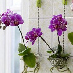 Living Room Budget Decorating Ideas and Tips | InteriorHolic.com
