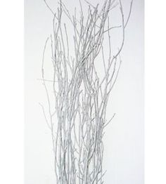 Silver Painted Birch Branches What better way to accent your craft project, floral arrangement, or holiday theme than with metallic silver birch branches? Purchase silver branches for centerpieces, place them alone in a vase for a stunning display, or add them to a bouquet, wreath or other home decorating project. Also amazing for weddings! #homedecor #weddingideas #weddingdecor #birchbranches #silverdecor