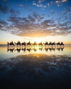 Sending you a postcard from the back of a camel in #Broome - wish you were here! When you visit this coastal town in @australiasnorthwest (and we say when, because it should be on your bucket list!), a camel ride along the famous #CableBeach should be an essential activity on your itinerary. Not to mention touring the pearl farms, checking out the local bar and restaurant scene, lazing on the beach, visiting the local crocodile park... ok, we'll stop now. Instagram photo by @australia