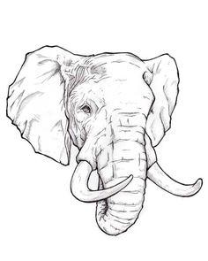 bank izimi karakalem Senor Elephant by MigraineGOAT on DeviantArt Tribal Elephant Drawing, Elephant Sketch, Elephant Tattoo Design, Elephant Tattoos, Elephant Art, Animal Sketches, Drawing Sketches, Realistic Animal Drawings, Cute Tattoos For Women
