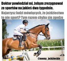 Horse Meme, Read News, Horse Riding, Reading Lists, Equestrian, Mexico, Horses, Humor, My Love