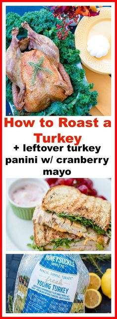 An easy step-by-step tutorial on how to roast a turkey. Got leftovers? My turkey panini with cranberry mayo is delicious! Just ask my family! Click the photo to see more or save for later. #HonestSimpleTurkey AD