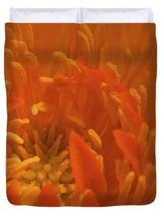 Trollius flower macro by Sandra Foster - Fine Art America. Pink Bedding, Luxury Bedding, Flower Stamen, Victoria Magazine, Country Living Magazine, Romantic Homes, Living Styles, Queen Duvet, Orange Flowers