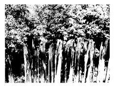 Visit SIRI SKOGSTAD Art section for Original, Unique Art Pieces and Art Prints. Growing Tree, Siri, Art Studios, Unique Art, Norway, Seaside, Art Pieces, Trees, Shapes