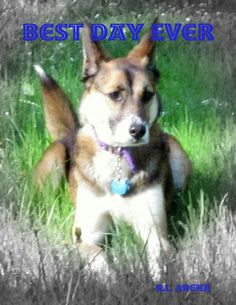 Best Day Ever - Renee Arena   Pets  481710460: Best Day Ever - Renee Arena   Pets  481710460 #Pets