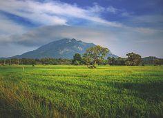Ritigala Mountain Sri Lanka #2 by Son-of-the-Morning-Light #ErnstStrasser #SriLanka