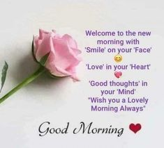 Good Morning Pictures, Images, Photos - Page 3 Happy Good Morning Quotes, Cute Good Morning Images, Morning Quotes Images, Good Morning Cards, Good Morning Prayer, Good Morning Inspirational Quotes, Morning Blessings, Good Morning Picture, Good Morning Friends