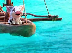 i am Moana of Motunui Gifs, Disney Fun, Disney Movies, Disney Pictures, Cute Pictures, Moana Gif, Pua Pig, Kawaii Pig, Disney Icons