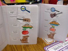 Kindergarten Smiles: Five Senses, what fun ideas for science journals and games to teach about the 5 senses!  Plus a graphing freebie!
