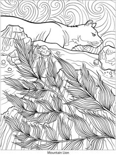 Creative Haven Nature Vistas Coloring Book Welcome To Dover Publications
