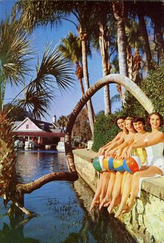 Silver Springs beauties Vintage Florida ☮ re-pinned by http://www.wfpcc.com