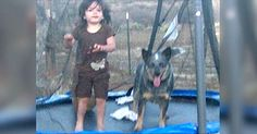 3-Year-Old Vanishes From Home. 15 Hours Later, They See A Dog Crouched Over Her In The Woods via LittleThings.com