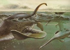 "Reconstruction by artist José Olivier of ""Elasmosaurus"""
